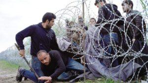 Il filo spinato al confine tra Ungheria e Serbia